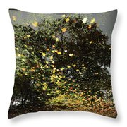Storm Force Throw Pillow