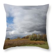 Storm Is Brewing Throw Pillow