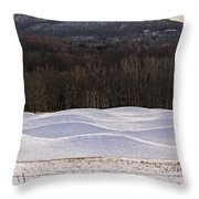 Storm King Wavefield In Snowy Dress Throw Pillow