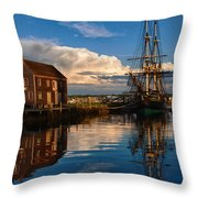Storm Leaves Reflection On Salem Throw Pillow