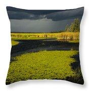 Storm Light At Patten Lake #2 Throw Pillow