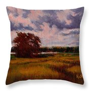 Storm Over Marshes Throw Pillow