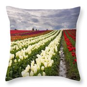 Storm Over Tulips Throw Pillow by Mike  Dawson