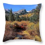 Storm Pass Trail Throw Pillow