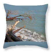 Storm Ravaged Throw Pillow