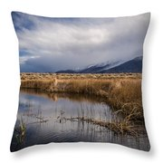 Storm Reflections Throw Pillow