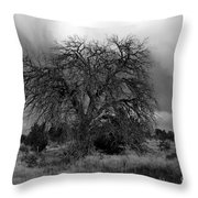 Storm Tree Throw Pillow