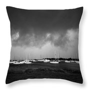 Storm Warning Throw Pillow