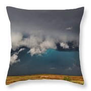Stormy Horizon Throw Pillow