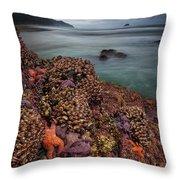 Stormy Life At Sea Throw Pillow