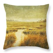 Stormy Marsh Throw Pillow
