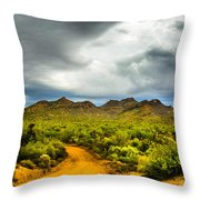 Stormy Road Home Throw Pillow