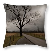 Stormy Roads Throw Pillow