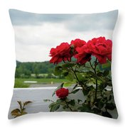 Stormy Roses Throw Pillow by Valeria Donaldson