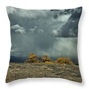 Stormy Wet Throw Pillow