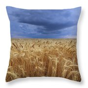 Stormy Wheat Field Throw Pillow
