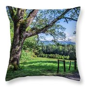 Story In The Smokies Throw Pillow by Jon Glaser