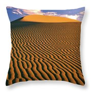 Story In The Wind Throw Pillow