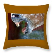Straight From The Horse's Mouth Throw Pillow