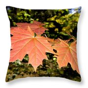 Strange Phenomenon Throw Pillow