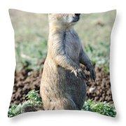 Stranger Danger Throw Pillow