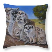Stranger In A Strange Land Throw Pillow
