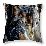 Stratum Oceanus Throw Pillow