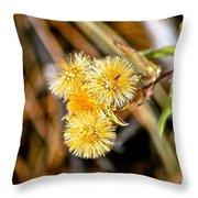 Straw Flowers Throw Pillow