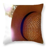Straw Hat Hanging In Sunny Cottage Throw Pillow