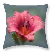 Strawberry And Blue - Daylily Throw Pillow