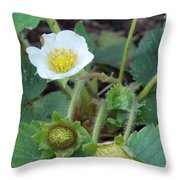 Strawberry Bloom And Baby Berries Throw Pillow