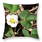 Strawberry Flower 2 Throw Pillow