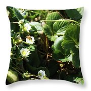 Strawberry Flower And Bee Throw Pillow