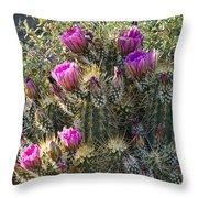 Strawberry Hedgehog Cactus  Throw Pillow