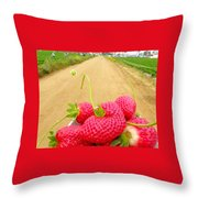 Strawberry Road Throw Pillow