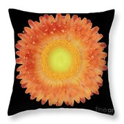 Pink Flower On A Black Background 3 Throw Pillow