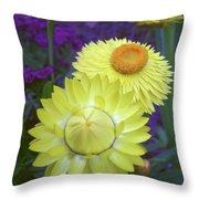 Strawflower Perfection  Throw Pillow
