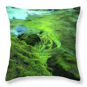 Stream Above Whitehorse Falls Throw Pillow