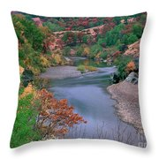 Stream And Fall Color In Central California Throw Pillow