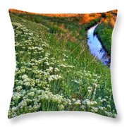 Stream And Sunset Throw Pillow