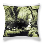 Stream In An Ancient Wood Throw Pillow