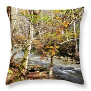 Stream In An Autumn Woods Throw Pillow