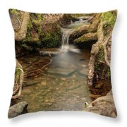 Stream In Judy Woods Throw Pillow