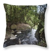 Stream In  Rainforest Throw Pillow