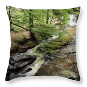 Stream In The Irish Countryside Throw Pillow