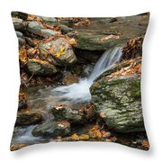 Stream In The Notch Throw Pillow