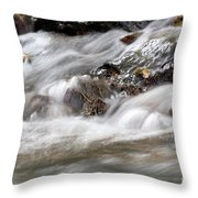 Stream Nature Spring Scene Throw Pillow
