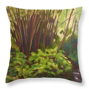 Stream Near Akaka Falls Throw Pillow