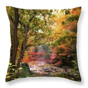 Stream Of Consiousness Throw Pillow