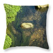 Stream Of Weeds II Throw Pillow